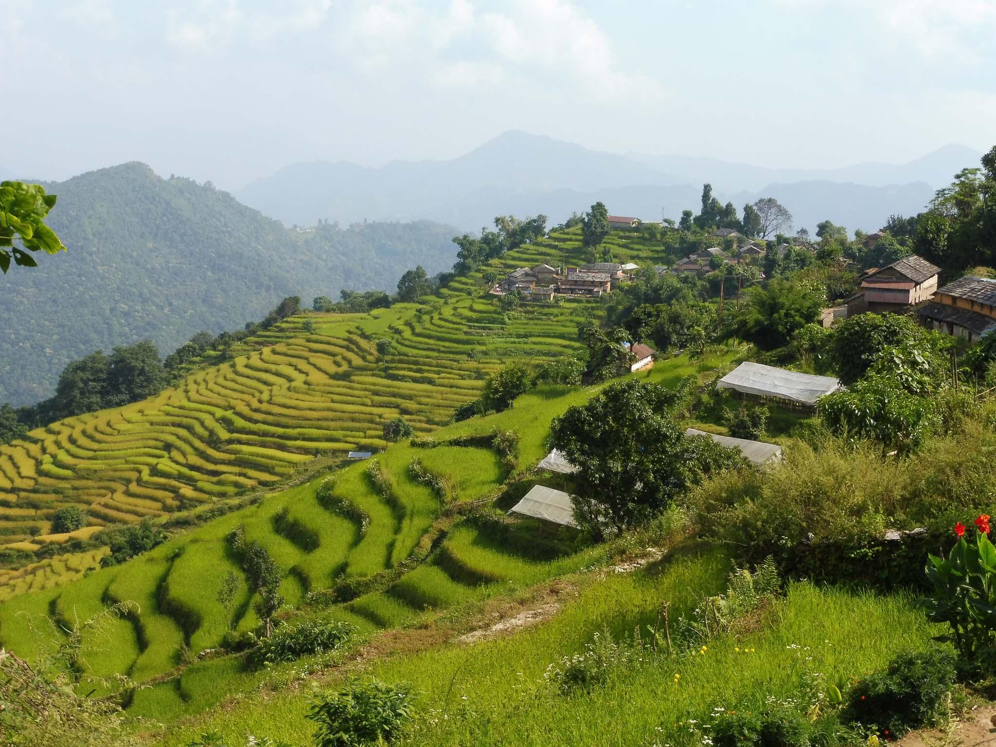 Balcon des Annapurna, rizières et villages