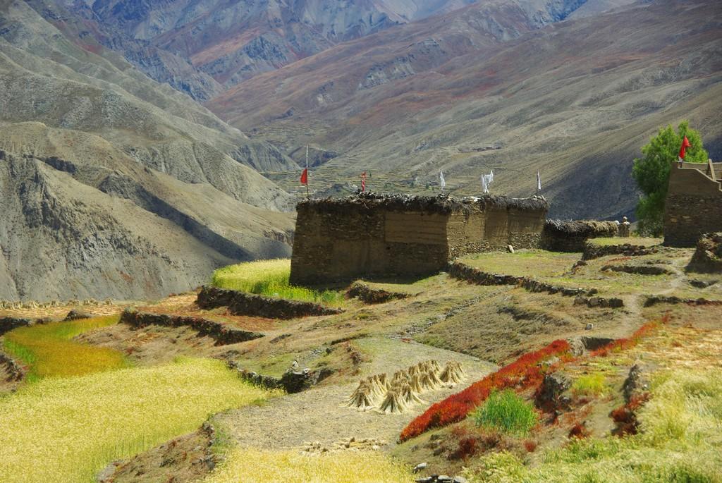 Trek Haut Dolpo Mustang, Saldang