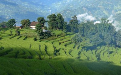 Tamang Heritage et Langtang
