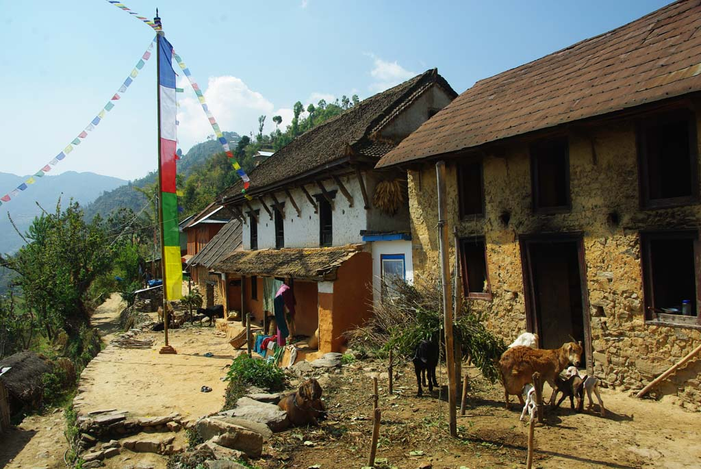 Trek chez l'habitant, village traditionnel népalais